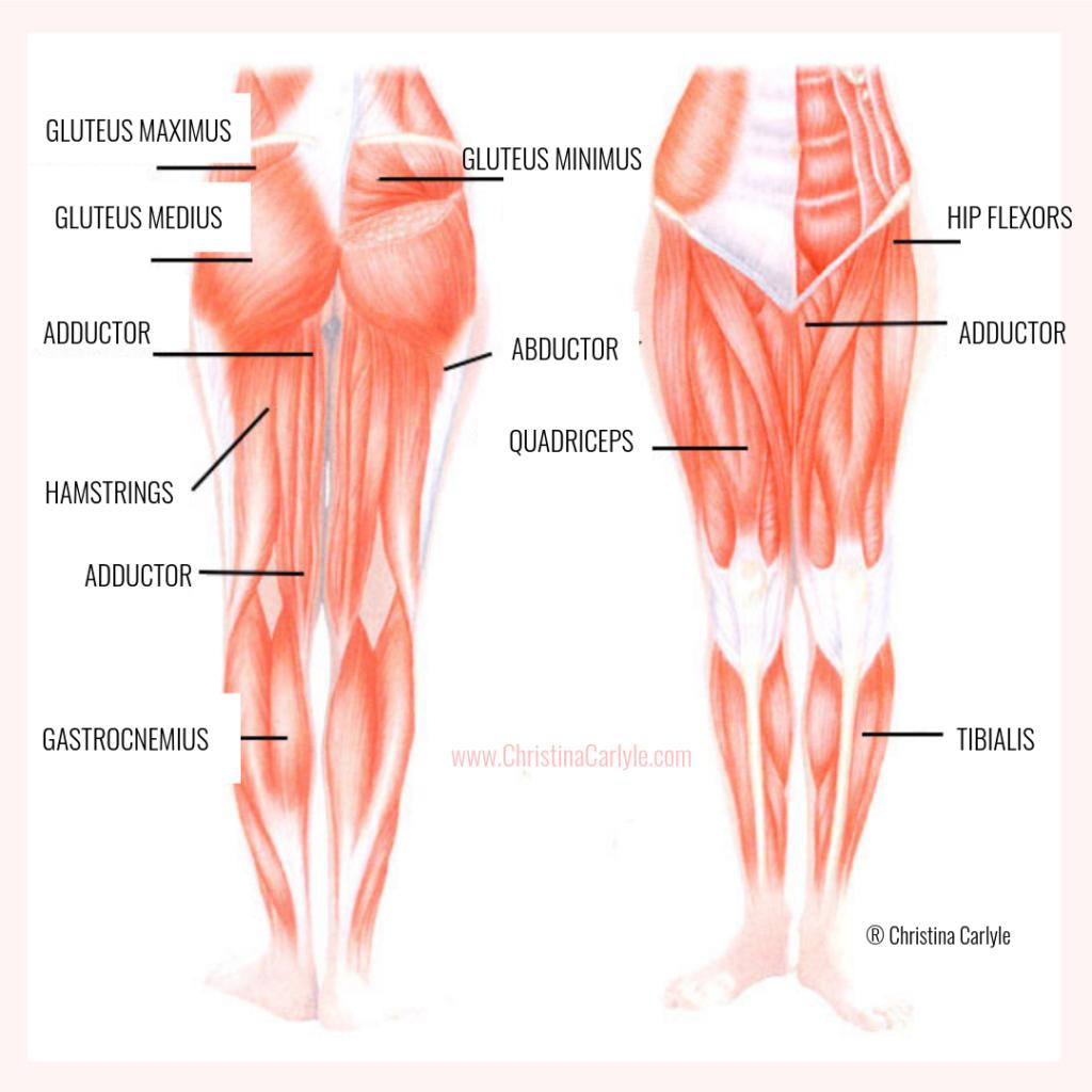 Best Leg Exercises for Women Christina Carlyle